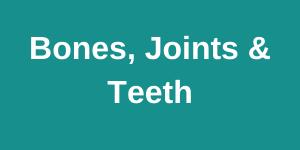 bines joints teeth